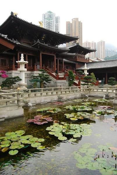 Estanque con lotos en el Chi Lin Nunnery