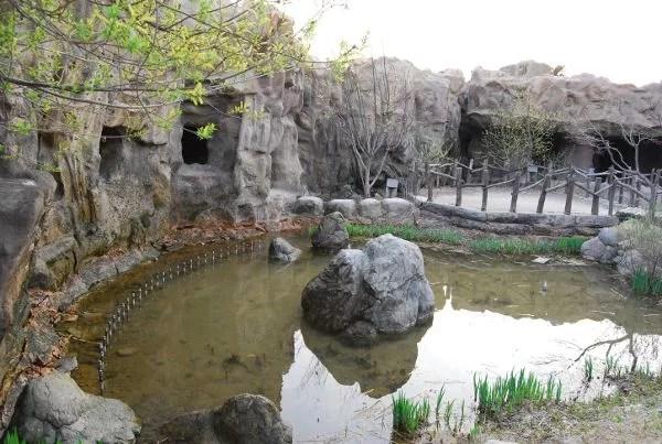 Estanque del Shilla Millennium Park