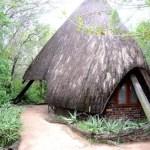 Fotos Cheetah Plains en el Kruger de Sudafrica, habitacion