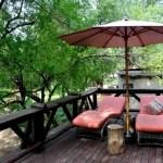 Fotos Cheetah Plains en el Kruger de Sudafrica, terraza