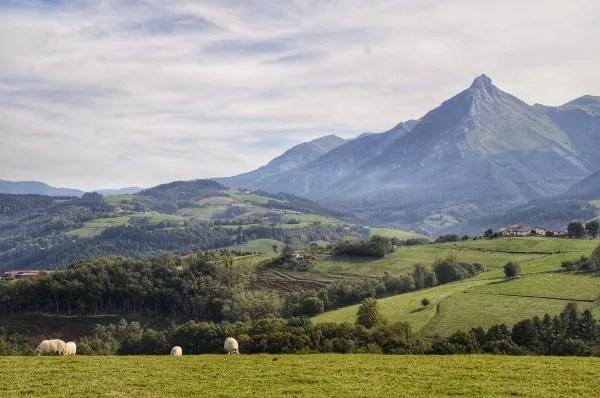 Fotos Goierri - ruta Idiazabal, Txindoki y ovejas