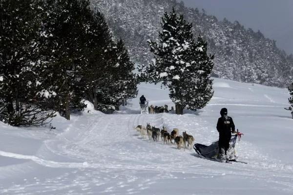 Fotos de Andorra, trineos de perros