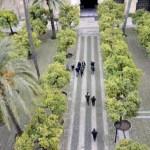 Fotos de Córdoba, patio de los naranjos