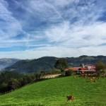 Fotos de Goierri, granja de vacas