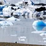 Fotos de Islandia, Fjallsarlon