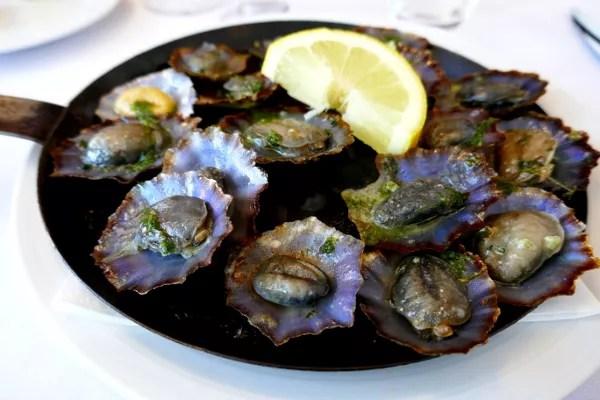 Fotos de Madeira, lapas