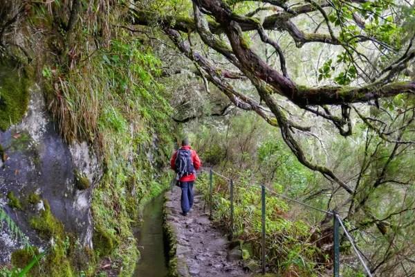 Fotos de Madeira, levada en el sendero do Caldeirao Verde