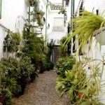 Fotos de Priego de Cordoba, calles del Barrio de la Villa