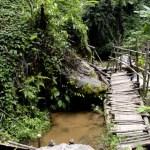 Fotos de Tailandia, caminata de Doi Inthanon