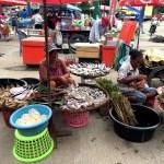 Fotos de Tailandia - crucero desde Ayutthaya, mercado local
