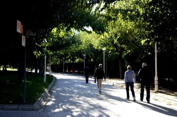 Fotos de Valencia, Jardines del Turia