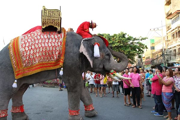 Fotos de viajes a Tailandia con niños y NaaiTravels, elefante y reverencia
