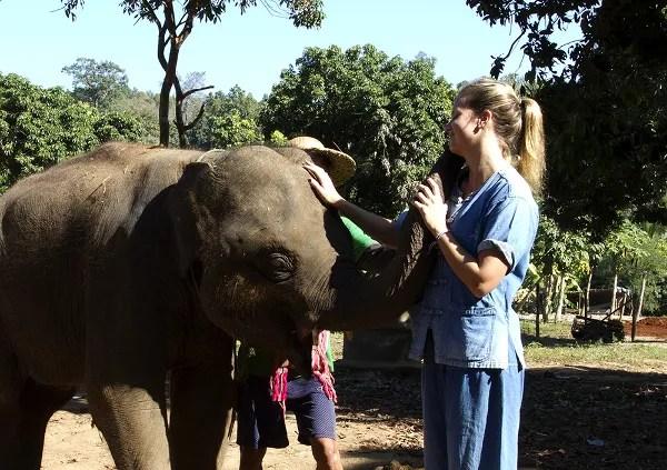 Fotos de viajes a Tailandia con niños y NaaiTravels, elefantes