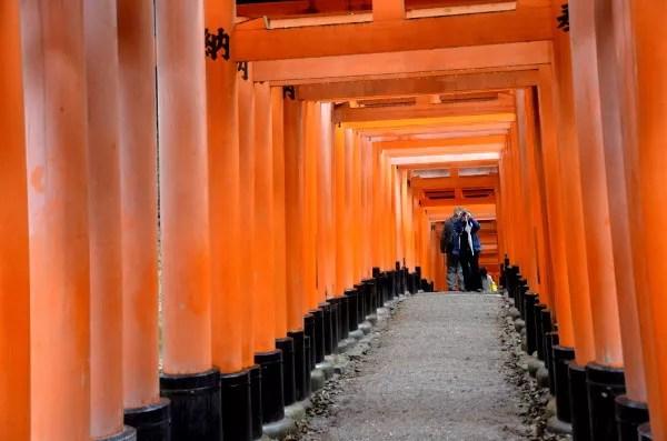 Fotos del Fushimi Inari de Kioto, fotos entre los torii