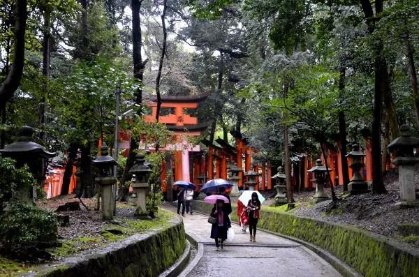 Fotos del Fushimi Inari de Kioto, paraguas