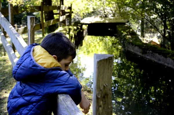 Fotos del Goierri en Euskadi, Teo en la serreria de Zerain