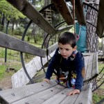 Fotos del Valle del Jerte, Parque Aventura Oriol tronco