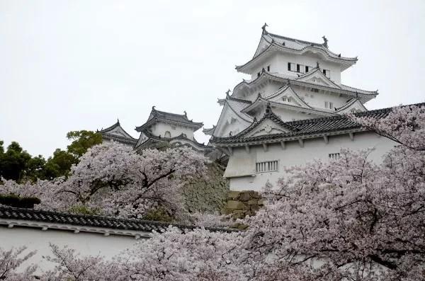Fotos de Japon con niños, Castillo de Himeji