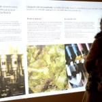 Fotos del Museo del Vino de Penafiel en Valladolid, carteles
