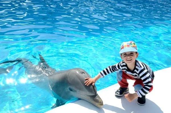 Teo y los delfines en Malta