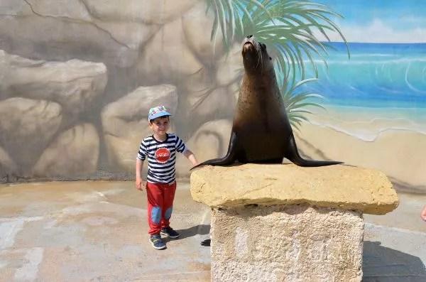 Teo y un león marino en el Mediterraneo Marine Park