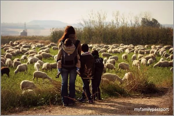 Viajes a Cataluña con niños