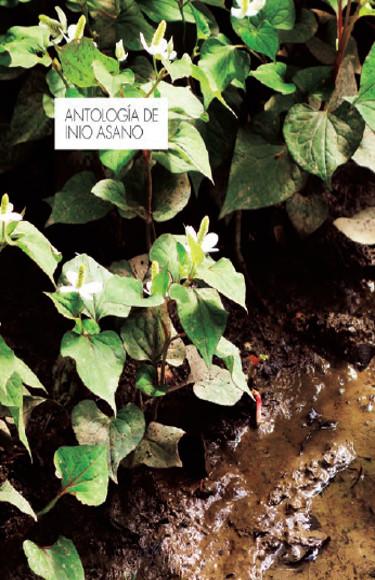 Lanzamientos Norma Editorial octubre 2020 Antología de Inio Asano - El Palomitrón