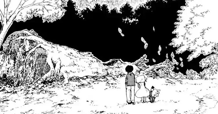 Reseña de Aomanjû el bosque mágico de Hoshigahara personajes - El Palomitrón