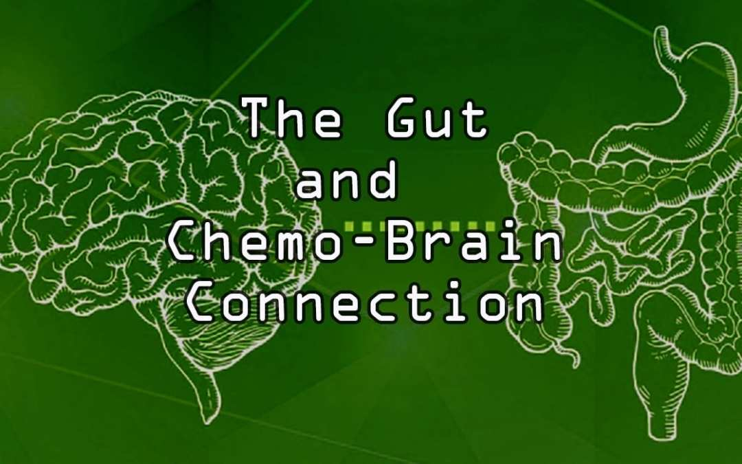 "Functional Endocrinology: The Gut and ""Chemo-Brain"" Connection"
