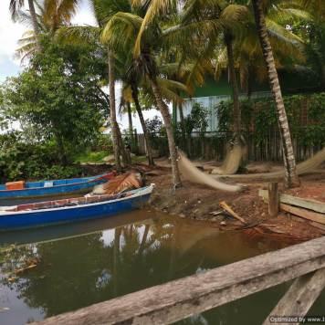 sus barcas de pesca