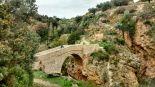 Puente sobre el Tuéjar