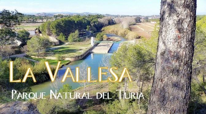 Vallesa – 9 de Enero 2020