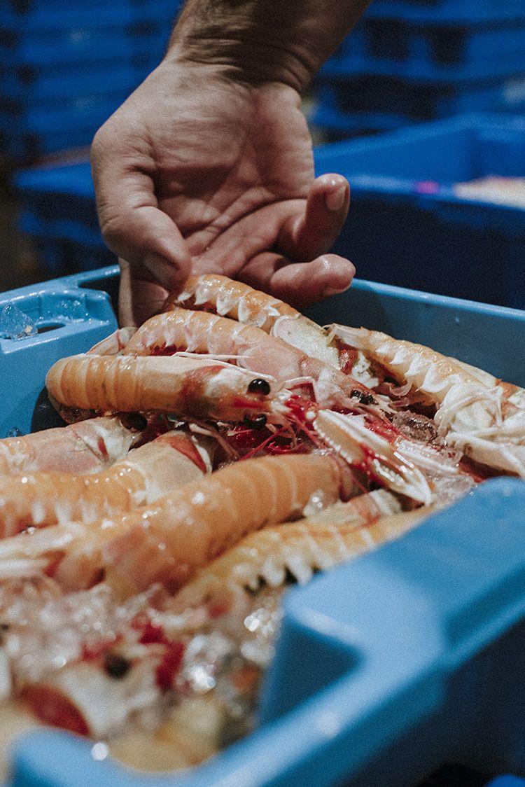 El Pescador Barcelona lonja gambas