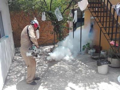 Aunque se realizan fumigaciones, según las autoridades el cuidado depende en un 90 % de las personas.