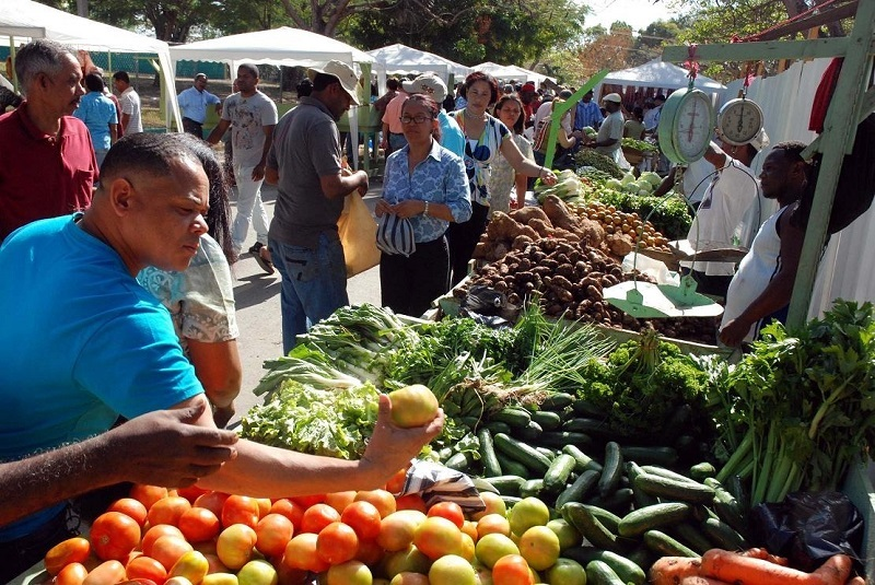 Los precios de los alimentos empiezan a estabilizarse.   FOTO/CORTESÍA