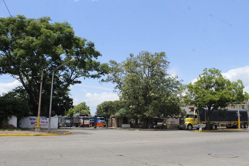 El Idema, el antiguo Vivero Municipal, la antigua Electrificadora, entre otros hacen parte de los bienes fiscales del municipio. Archivo/EL PILÓN