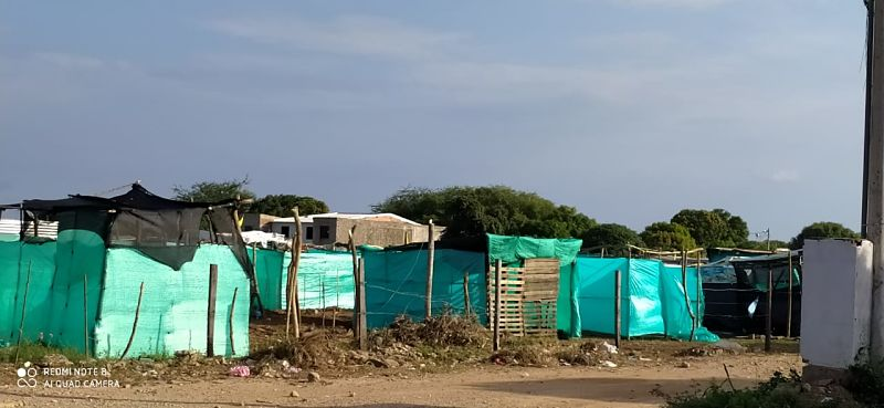 Los invasores están construyendo desde las horas de la mañana sus casas.