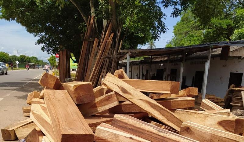 En el pasado mes de junio las autoridades decomisaron 24 metros de madera de algarrobillo avaluada en más de $ 97 millones.  FOTO: CORTESÍA.