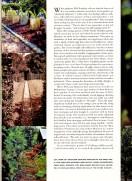 a simpler life el pocito gardens illustrated november 2000 04