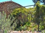 a simpler life el pocito house exterior 05