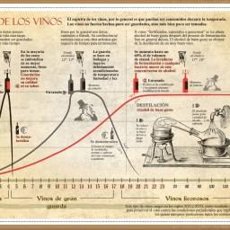 La historia sobre la vida de los vinos