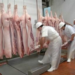 Requisitos para habilitación de mataderos aves, lechones y especies menores en Argentina
