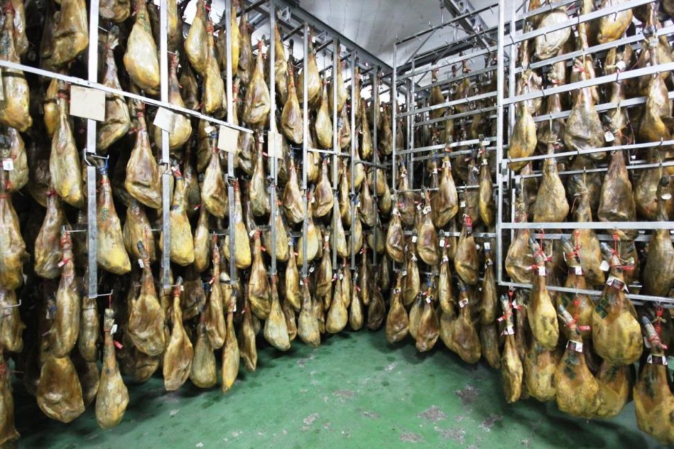 proceso-de-maduración-y-secado-del-jamón-ibérico-El-Portal-del-Chacinado