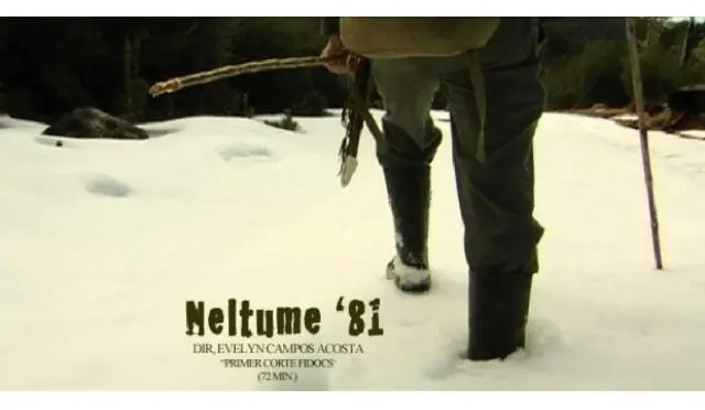Documental: Neltume 81