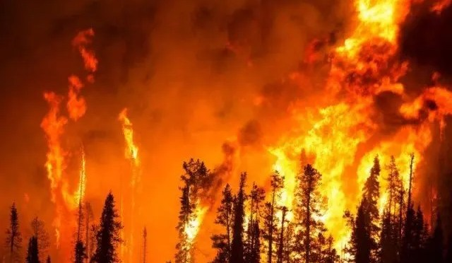Caos climático: la culpa es del capitalismo