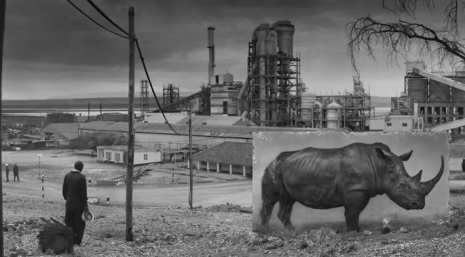 La destrucción de flora y fauna silvestres no será paulatina, sino por sucesivos colapsos bruscos