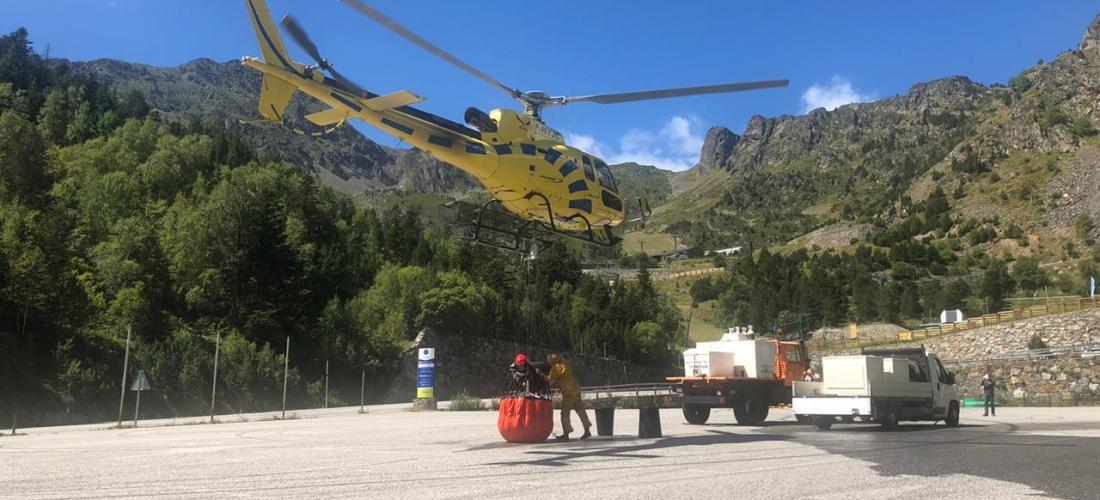Complerta la segona fase de repoblació a Esbalçat, Creussants, Estanys Forcats i Montmantell