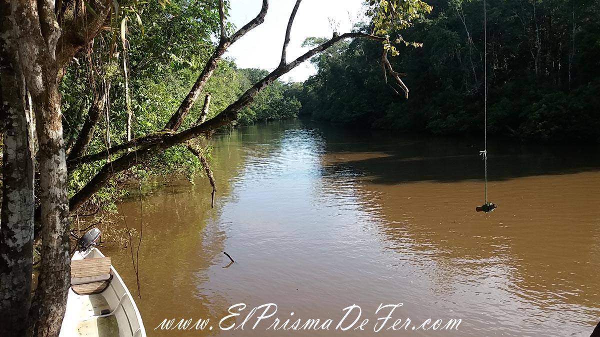 Tour por la Reserva de Cuyabeno de Ecuador