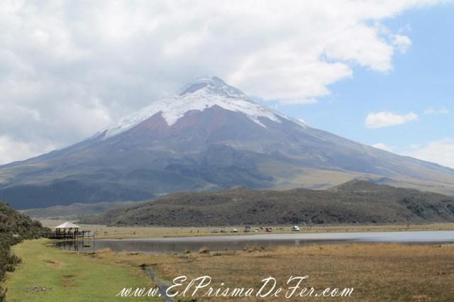 Vistas del Volcán Cotopaxi desde la Laguna de Limpiopungo