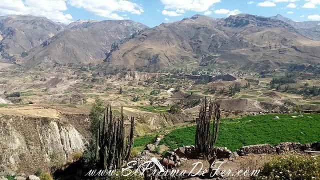 Cañon del Colca - Perú